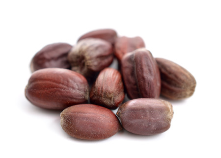 Jojoba (Simmondsia chinensis) seeds. Isolated on withe beckground. Stock Photo