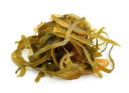 alga marina: Kelp (laminaria) aislado en el fondo blanco.