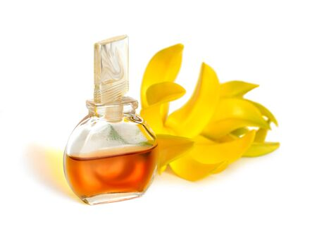 Ylang-Ylang essential oil with flowers. Isolated on white background.