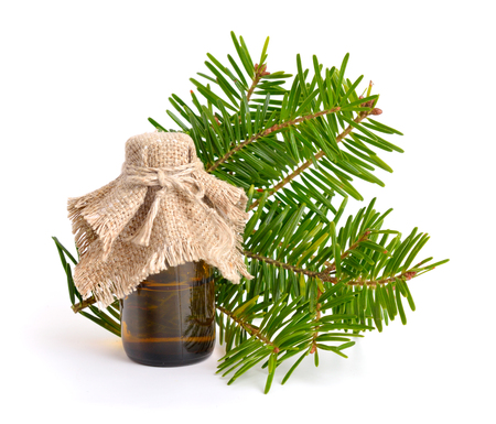 libani: Firs (Abies) essential oil. Isolated on white background. Stock Photo