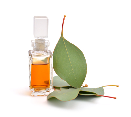 Eucalyptus essential oil with leaves. Isolatedon white background.