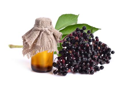 Sambucus nigra. Common names include elder, elderberry, black elder, European elder, European elderberry and European black elderberry.