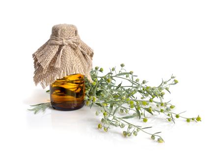 Artemisia with pharmaceutical bottle. Isolated.