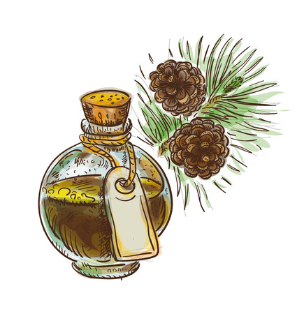 Pine tar in a bottle with branch. Watercolor imitation with sketch. Vector illustration. Illustration