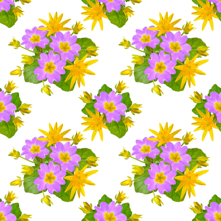 Seamless background with Marsh Marigold and Primula isolated on white.
