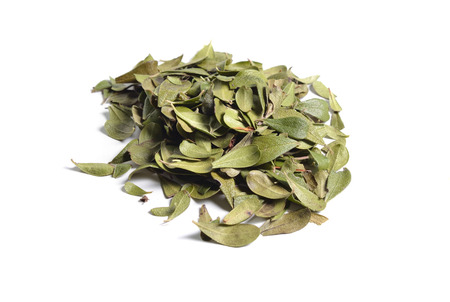 Dried medicinal herbs raw materials isolated on white. Leaves of Arctostaphylos. Stock Photo