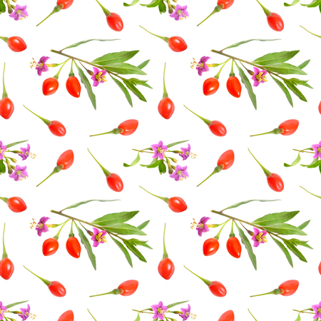 Goji berries or Lycium barbarum with flowers isolated on white background. Seamless background Stock Photo