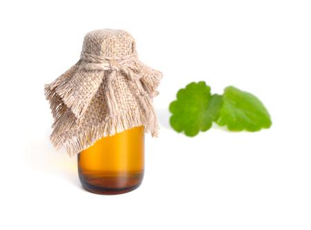 Pharmaceutical bottle with Gotu Cola leaves on background. Isola