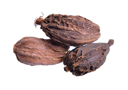 Black cardamom, also known as hill cardamom, Bengal cardamom, greater cardamom, Indian cardamom, Nepal cardamom, winged cardamom, or brown cardamom or cardamon or cardamum. Isolated.