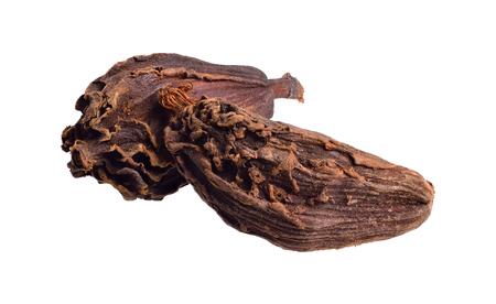 Czarny kardamon, znany również jako kardamon górski, kardamon bengalski, kardamon większy, kardamon indyjski, kardamon nepalski, kardamon skrzydlaty lub brązowy lub kardamon lub kardamon. Odosobniony. Pełna głębia ostrości.
