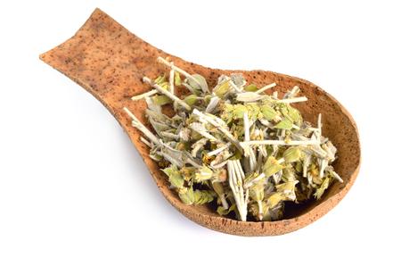 Sideritis, also known as ironwort, Greek mountain tea and shepherd's tea. Isolated on white. Reklamní fotografie - 123208237