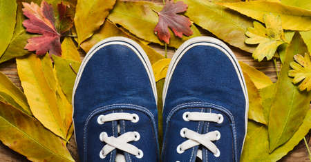 Hipster blue sneakers on a wooden floor against a background of yellow fallen leaves.