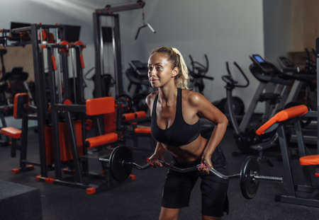 Young fit woman in sportswear is training with a barbell in the gym. Healthy lifestyle concept. Body training with free weights Banco de Imagens