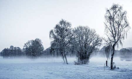 winter time: Winter Time Stock Photo