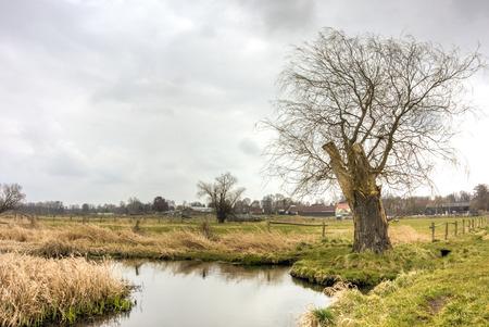 Landscape in Berlin