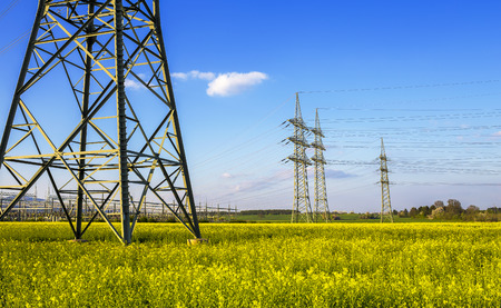 Pylons in a blooming canola field Standard-Bild