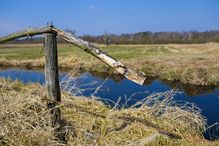 paling: Field and meadow Stock Photo