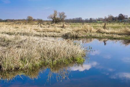 meadowland: Landscape Stock Photo