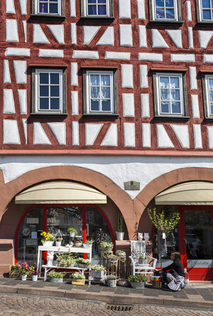 pflanzen: mittelalterliches Verkaufsgewölbe in der Kleinstadt Gelnhausen, Hessen