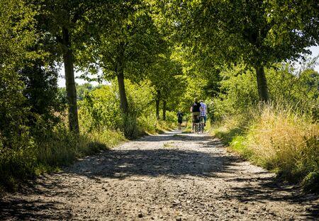 Biker on a walk in the woods