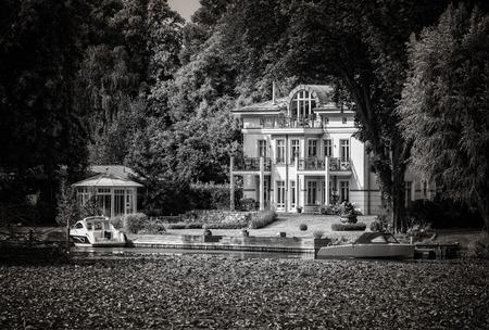 seerosen: Living the lake Stock Photo