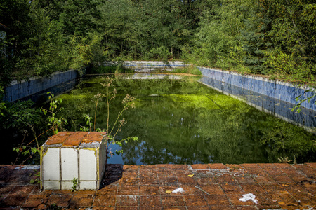 antisocial: old swimming pool in the forest