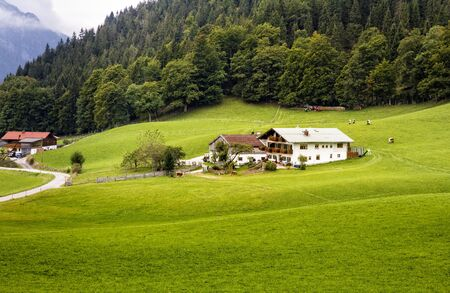 in bavaria: a mountain pasture in Bavaria