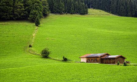 farm field: Landscape in Bavaria