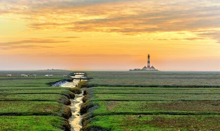 fruitful: The lighthouse in Westerhever Stock Photo