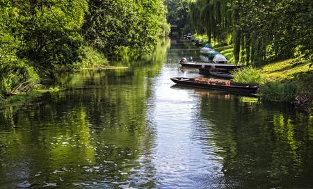 Flow in the Spreewald in Brandenburg Stok Fotoğraf