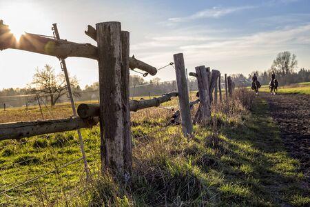 feld: Wooden fence on a field