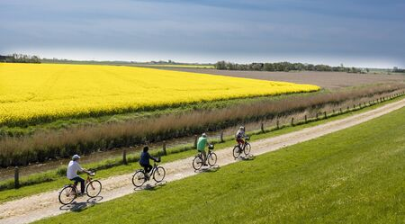 feld: Cyclists in Northern Germany Editorial