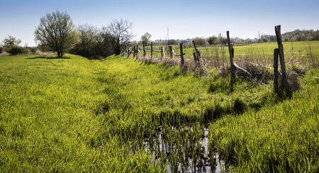 field and farmland