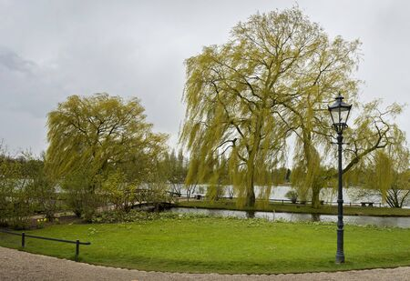 gartenanlage: Trees at schweriner lake Stock Photo