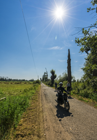 feld: Country road in the noon heat