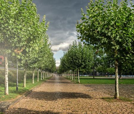 Kleine Straße mit Bäumen Standard-Bild - 95471350