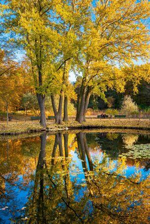 Landscape in a Berlin park