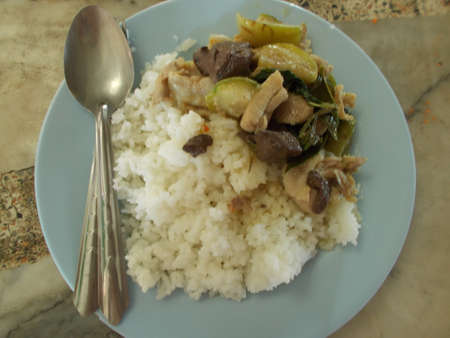 cooked rice: cooked rice with Green curry and chicken. Stock Photo