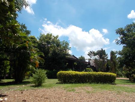 openair: Fresh natural park - open-air