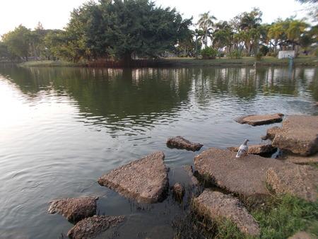 nakhon: Sra Pang Tong public park in Sakon Nakhon, Thailand.