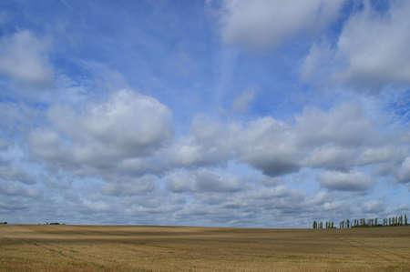 farming area: View across open fields Stock Photo