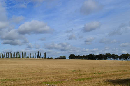 designated: View across open fields Stock Photo