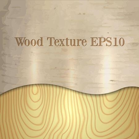 hardwood flooring: Вектор светлого дерева березы текстура с кривой Иллюстрация
