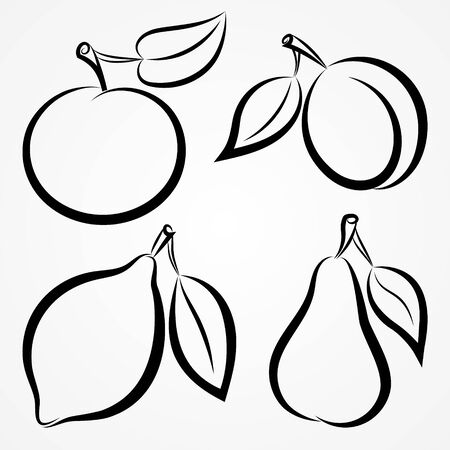 Vector abstract hand-drawn silhouettes of fruits Vector
