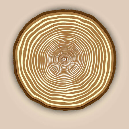 rings on a tree: Vector wood texture abstract background with beige tree rings Illustration