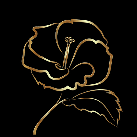 Hibiscus flower sketch gold, rich, elegant and exquisite Illustration