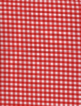 Red Plaid fabric photo