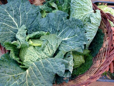 Cabbages in a basket Stock Photo