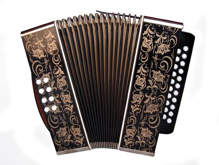 accordian isolated on a white background