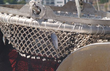 fishing net with a fish Stock Photo